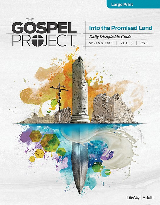 Gospel Project For Adults CSB Discipleship Guide Large Print (Paperback)