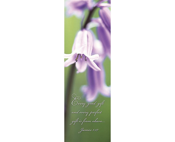 Every Gift Bookmark (Pack of 25) (Bookmark)