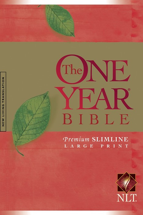 The NLT One Year Bible Slimline Large Print PB (Paperback)