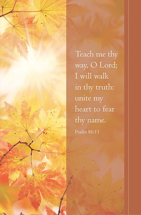 Teach Me Thy Way Bulletin (Pack of 100) (Bulletin)