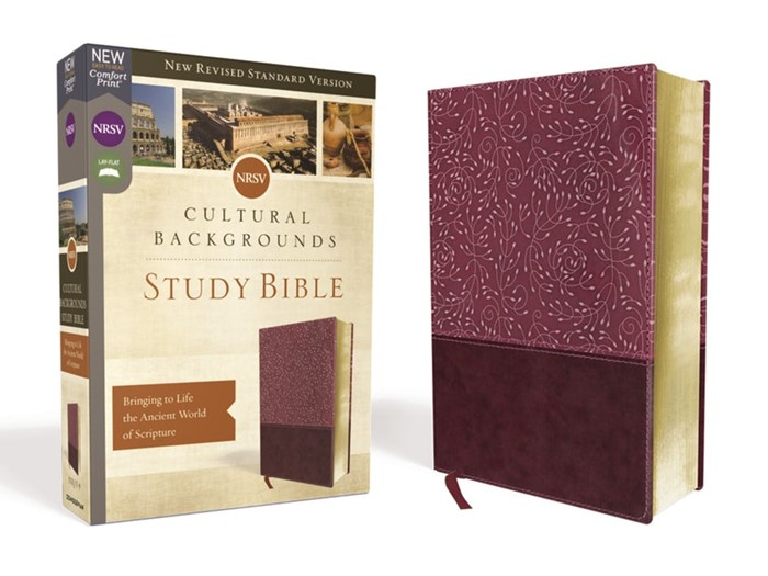 NRSV Cultural Backgrounds Study Bible, Burgundy (Imitation Leather)