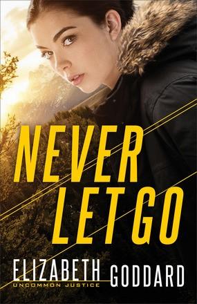 Never Let Go (Paperback)