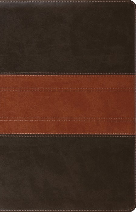 ESV Large Print Thinline Reference Bible, Forest/Tan (Imitation Leather)