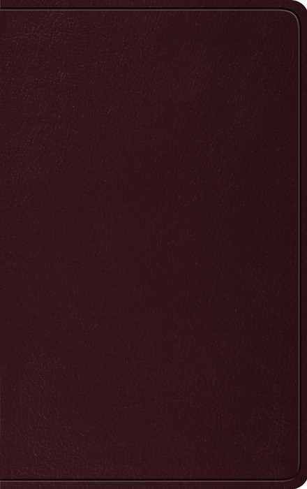 ESV Thinline Bible, Bonded Leather, Burgundy (Bonded Leather)