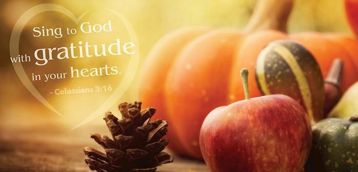 Gratitude Thanksgiving Offering Envelope (Pack of 50) (Bulletin)