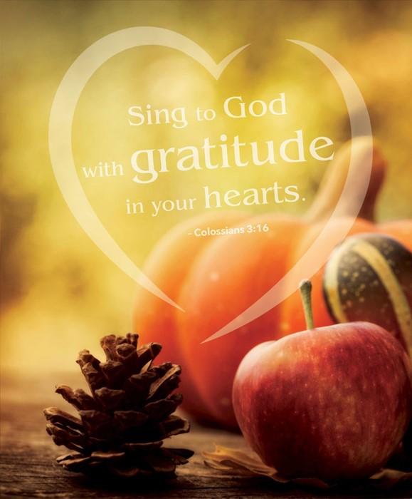 Gratitude Thanksgiving Bulletin, Large (Pack of 50) (Bulletin)