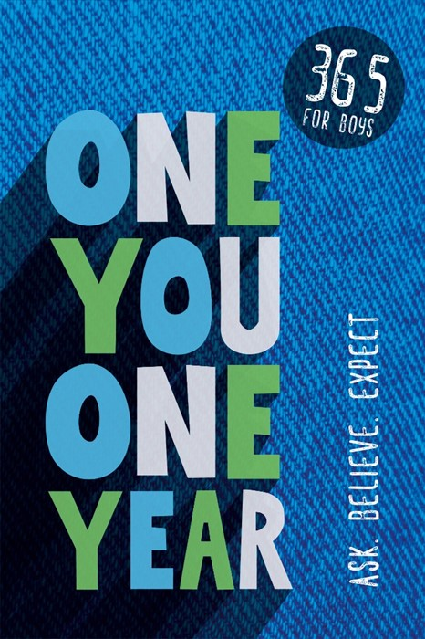 One You One Year (Paperback)