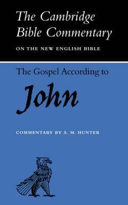 The Gospel According To John (Paperback)