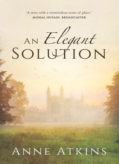 Elegant Solution, An (Paperback)