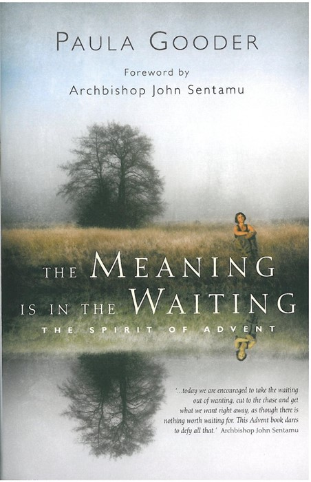 The Meaning Is In The Waiting (Paperback)