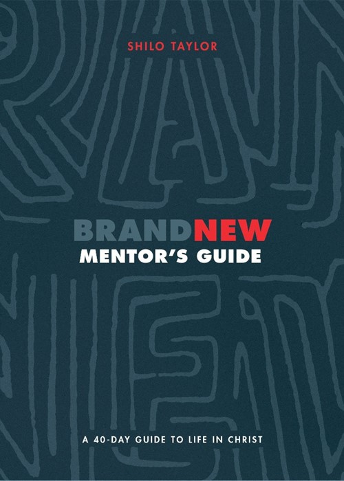 Brand New Mentor's Guide (Paperback)