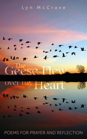 The Geese Flew Over My Head (Paperback)