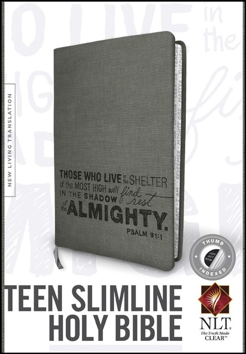 NLT Teen Slimline Bible: Psalm 91 (Imitation Leather)