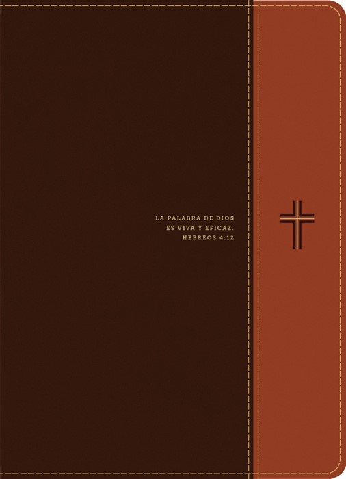 Biblia de estudio del diario vivir RVR60, letra grande (Imitation Leather)