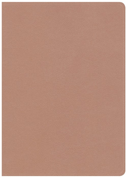 CSB She Reads Truth Bible, Rose Gold LeatherTouch, Indexed (Imitation Leather)