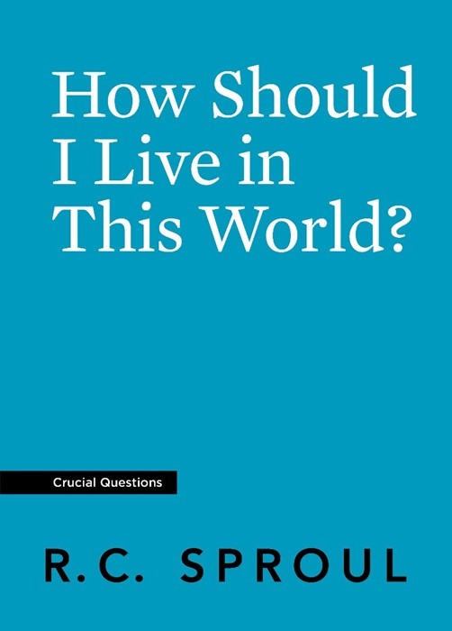 How Should I Live in This World? (Paperback)