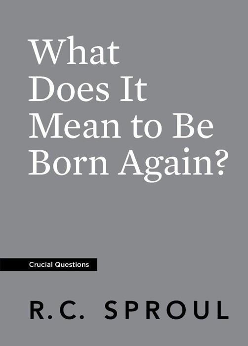 What Does It Mean to Be Born Again? (Paperback)