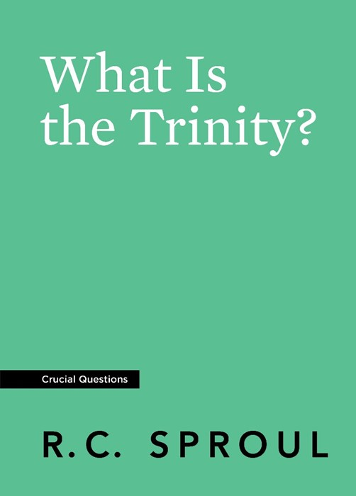 What Is the Trinity? (Paperback)