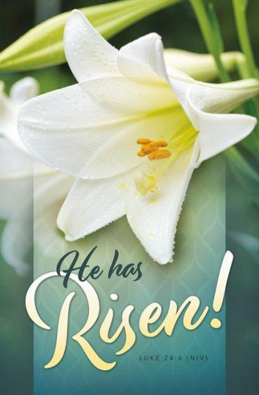 He Has Risen Easter Bulletin (Pack of 100) (Bulletin)