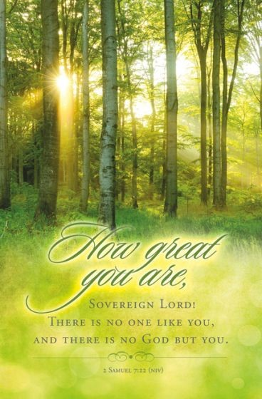 How Great You Are Bulletin (Pack of 100) (Bulletin)