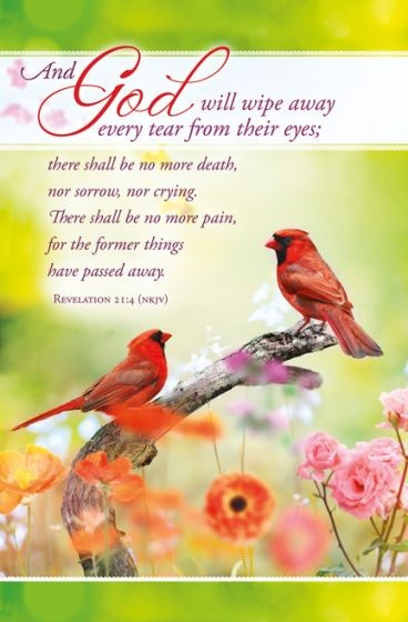Wipe Every Tear Funeral Bulletin (Pack of 100) (Bulletin)
