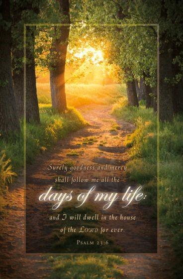 Psalm 23 Funeral Bulletin (Pack of 100) (Bulletin)