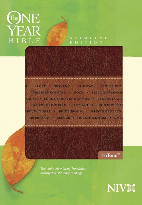 The NIV One Year Bible Slimline Edition (Imitation Leather)
