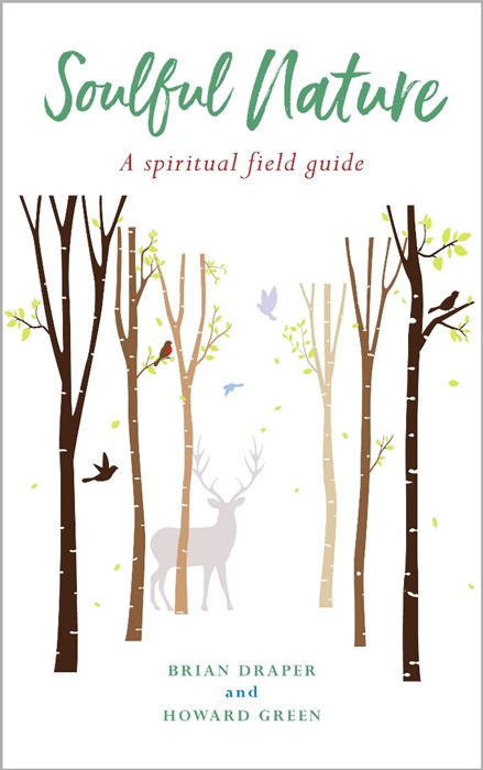 Soulful Nature (Paperback)