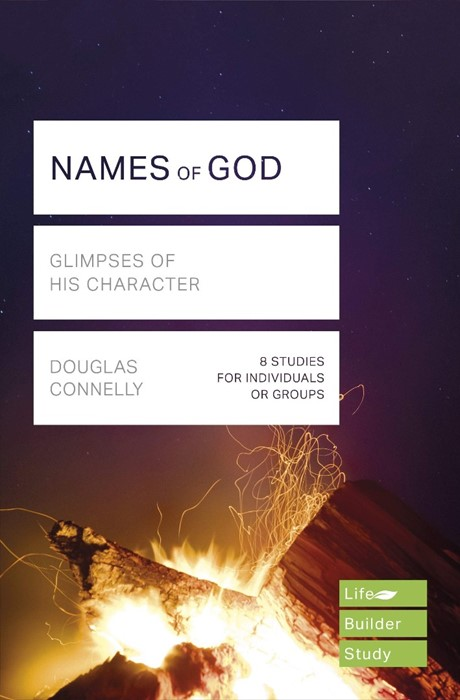 LifeBuilder: Names of God (Paperback)