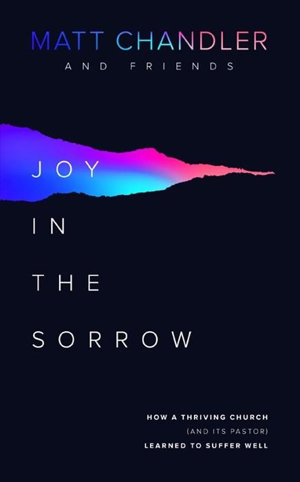 Joy in the Sorrow (Paperback)