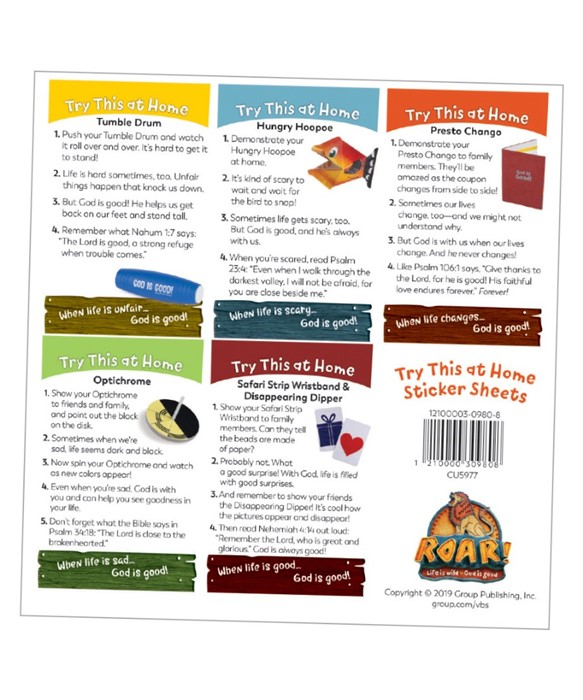 Try This at Home Sticker Sheet (pack of 10) (Stickers)