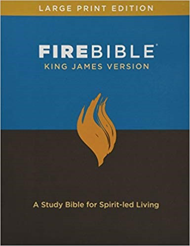 KJV Fire Bible, Large Print, Bonded Leather (Bonded Leather)
