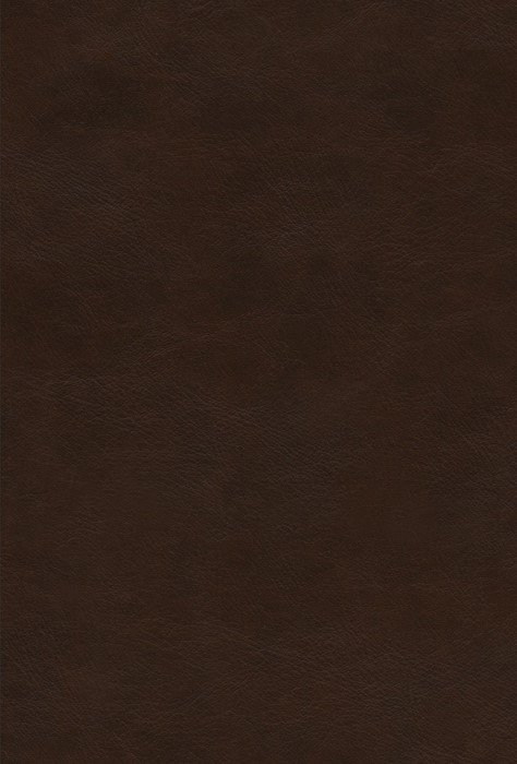 The Psalms, ESV, TruTone over Board, Deep Brown (Imitation Leather)
