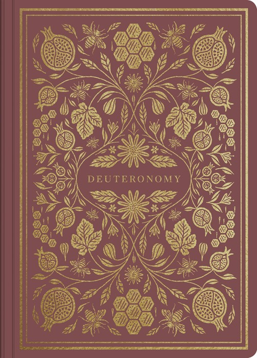ESV Illuminated Scripture Journal: Deuteronomy (Paperback)