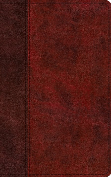 ESV Large Print Thinline Bible, TruTone, Burgundy/Red (Imitation Leather)
