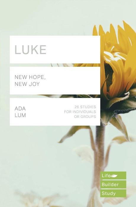 LifeBuilder: Luke (Paperback)