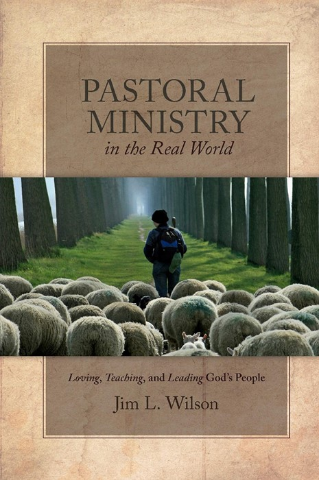 Pastoral Ministry in the Real World (Paperback)
