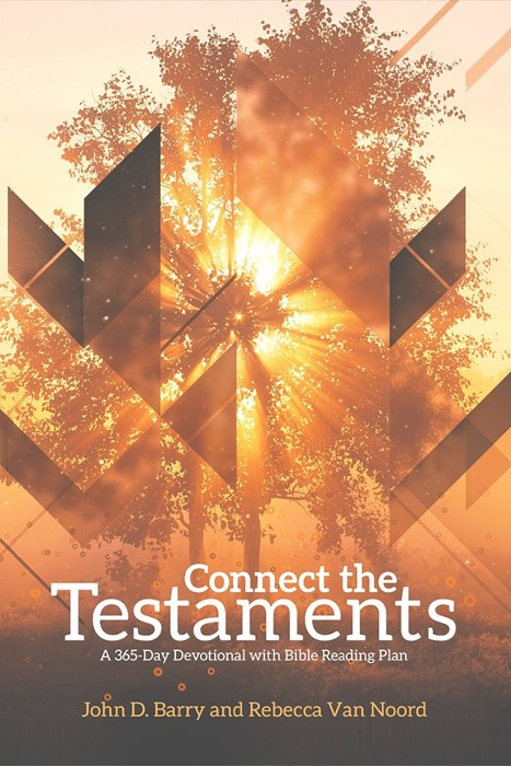 Connect the Testaments (Paperback)