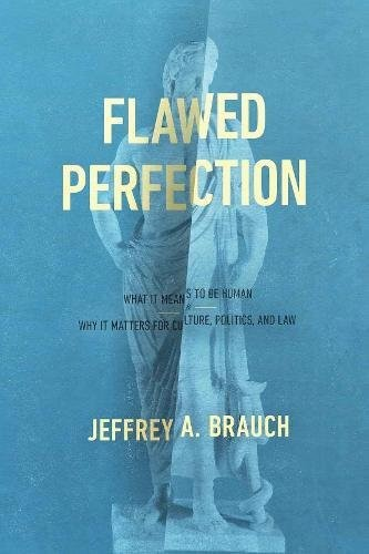 Flawed Perfection (Paperback)
