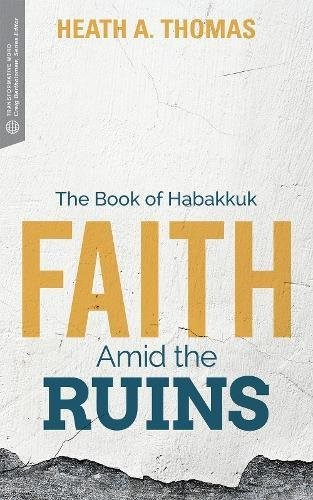 Faith Amid the Ruins (Paperback)