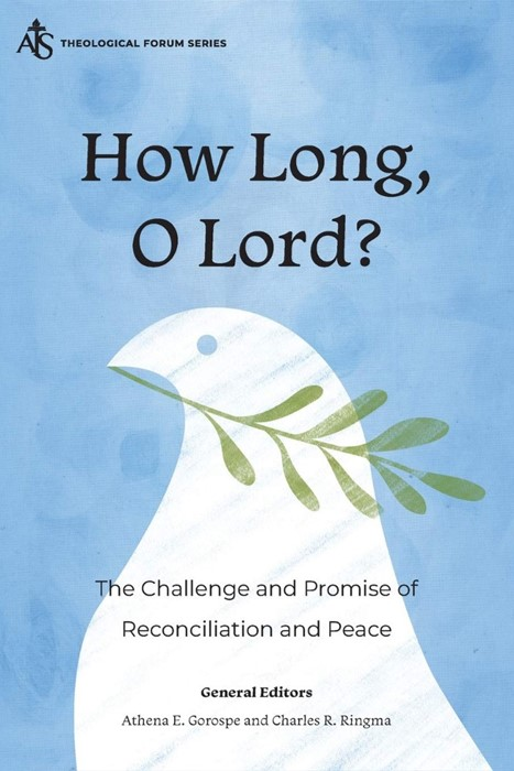 How Long, O Lord? (Paperback)