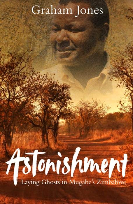Astonishment (Paperback)