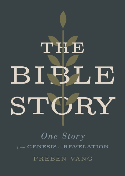 The Bible Story (Paperback)