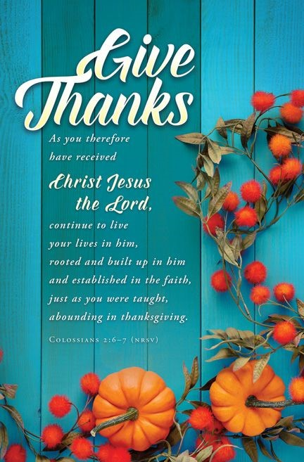 Give Thanks Bulletin (pack of 100) (Bulletin)