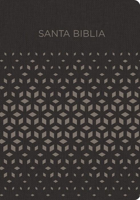 RVR 1960 Biblia para regalos y premios, negro/plata símil pi (Imitation Leather)