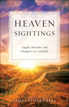 Heaven Sightings (Paperback)