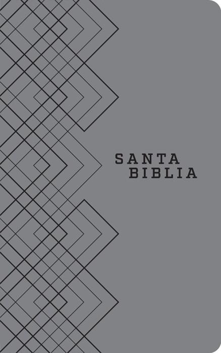 Santa Biblia NTV, Edición ágape (SentiPiel, Gris), (Imitation Leather)