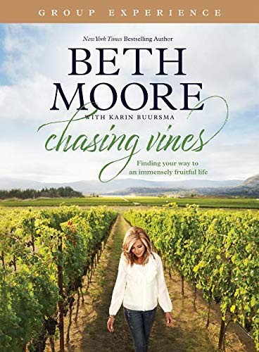 Chasing Vines Group Experience (Paperback)