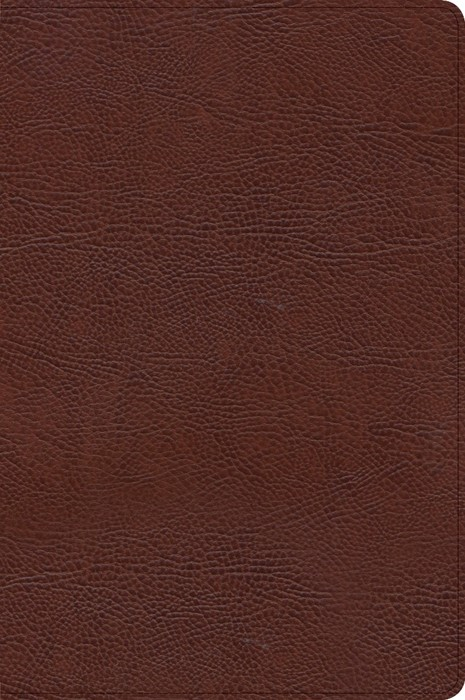 CSB Verse-by-Verse Reference Bible, Brown Bonded Leather (Imitation Leather)