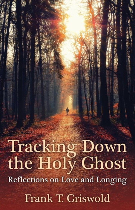 Tracking Down the Holy Ghost (Paperback)
